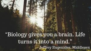 Difference between brain and mind quote
